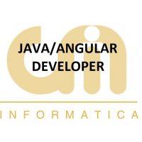 JAVA/ANGULAR Developer
